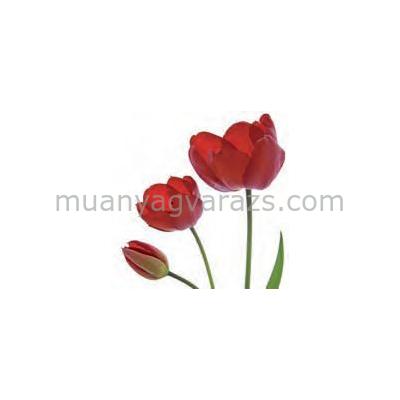 PPD.C006850 Tulip Trio papírszalvéta 33x33cm,20db-os